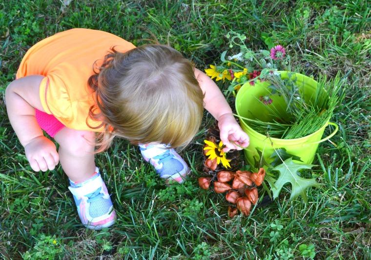 Nature Blog 5